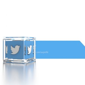 Social Icons Cube Twitter