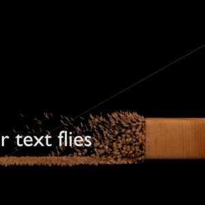 Your Text Flies